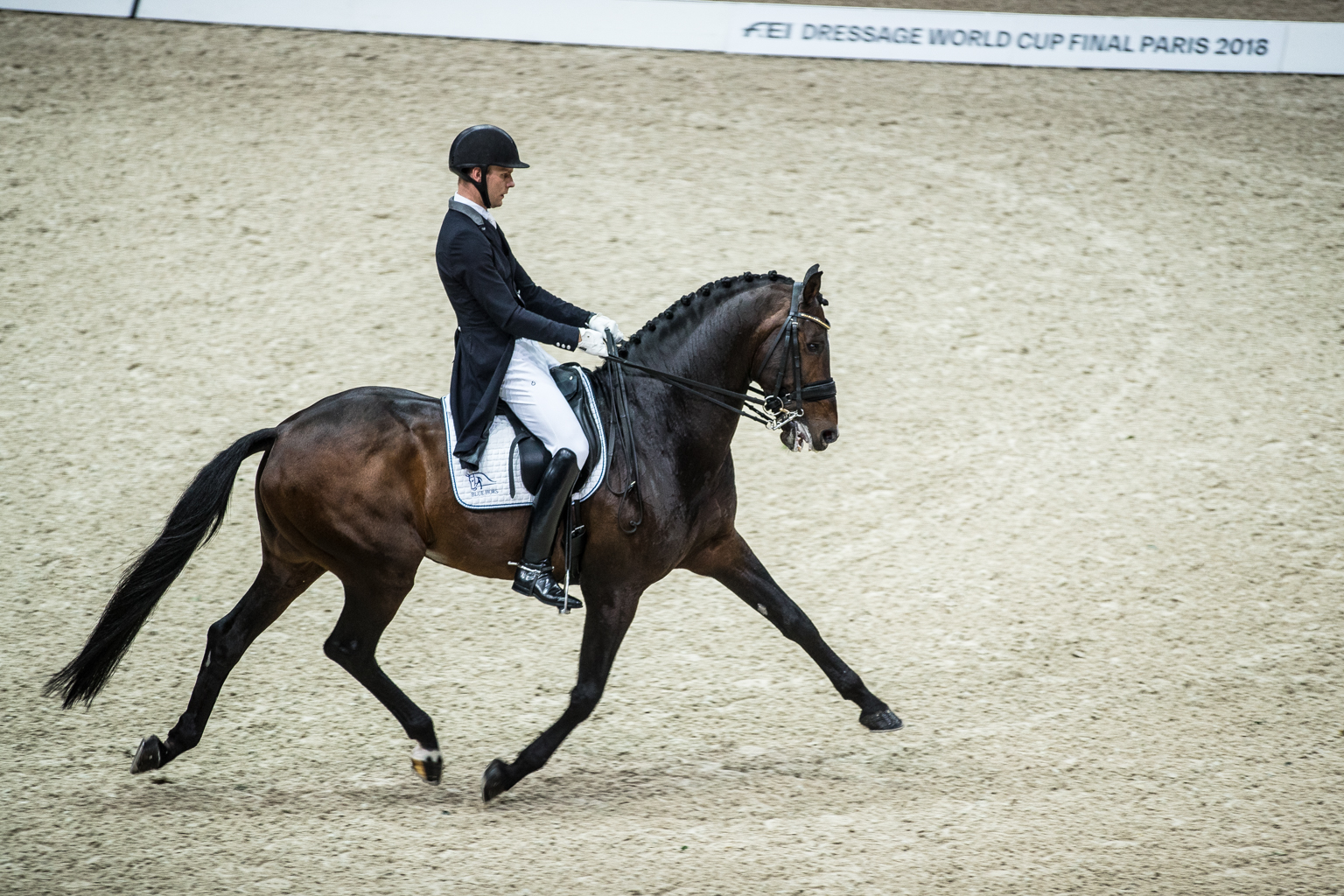 Fitness On Toast - FEI Dressage World Cup Finals Paris April 2018 France-23